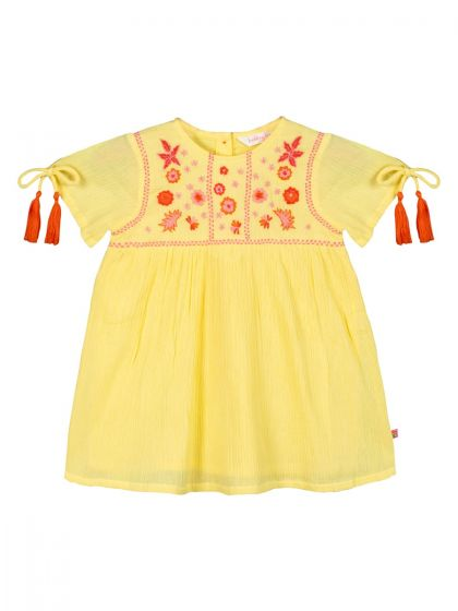Girls Yellow Embroidered Fit and Flare Dress