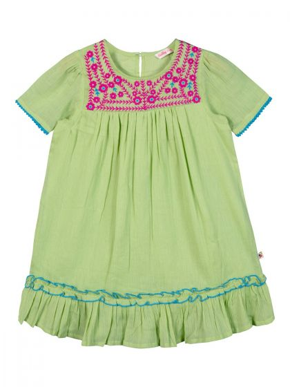 Girls Green Embroidered A-Line Dress